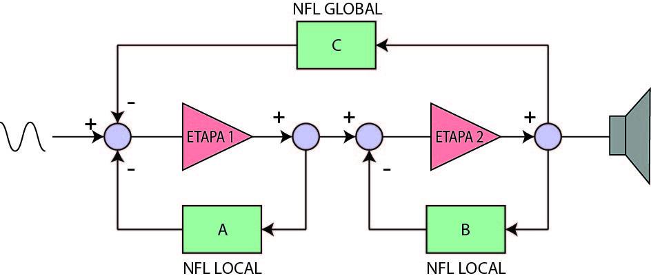 NFL amplificador audio